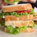山食修行で毎朝サンドイッチ!🍞🍅