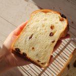 湯種レーズン食パン❁参考レシピあり